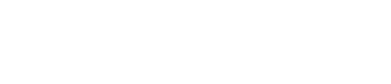 Cognitive Neuroimaging Laboratory