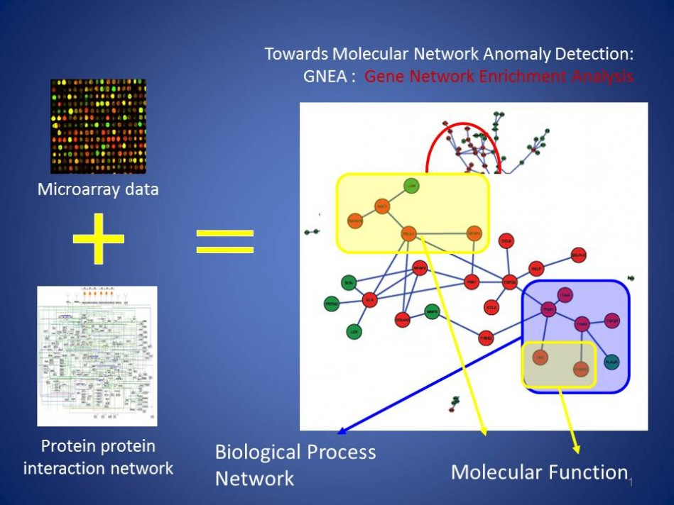 Towards Molecular Network Anomaly Detection